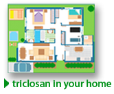 Triclosan in Your Home