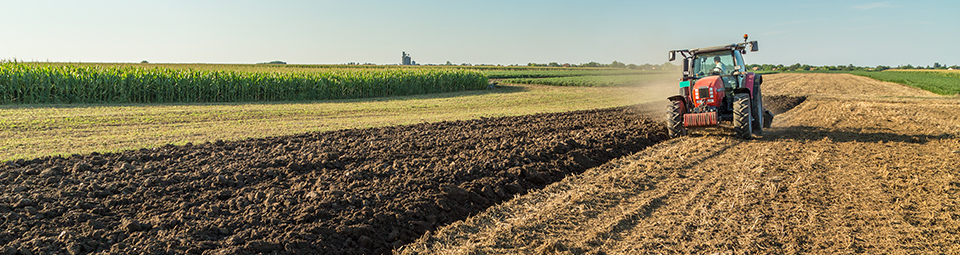 agricultural subsidy The idea that agricultural subsidies are fully capitalized into farmland values  forms the foundation of the argument that subsidies are entitlements and  removing.