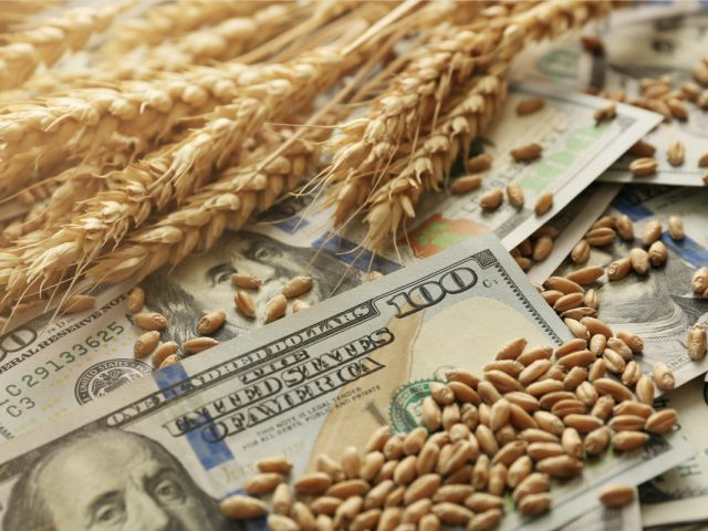 Money and grains