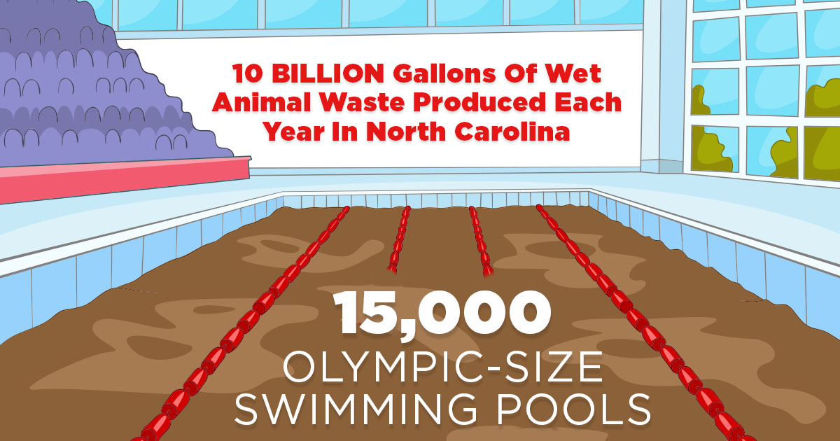 10 billion gallons of wet animal waste are produced each year in North Carolina
